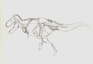 dinosaur12
